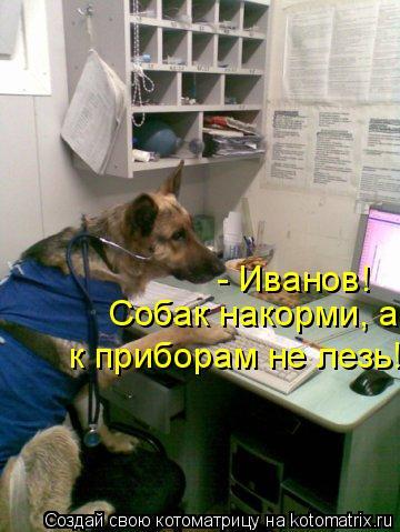 Котоматрица: - Иванов! Собак накорми, а к приборам не лезь!