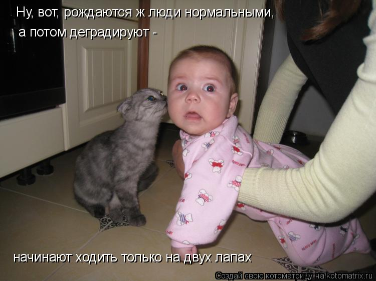 Котоматрица: Ну, вот, рождаются ж люди нормальными, а потом деградируют - начинают ходить только на двух лапах