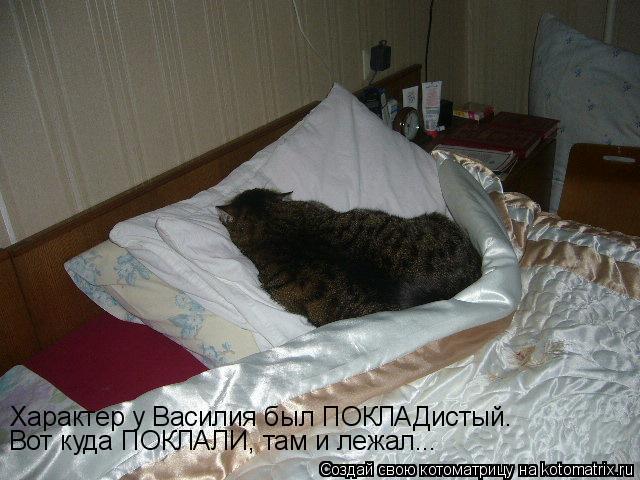 Котоматрица: Характер у Василия был ПОКЛАДистый. Вот куда ПОКЛАЛИ, там и лежал...
