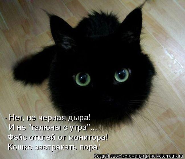 """Котоматрица: - Нет, не черная дыра! И не """"галюны с утра""""... Фэйс отклей от монитора! Кошке завтракать пора!"""