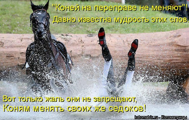 """Котоматрица: """"Коней на переправе не меняют""""! Давно известна мудрость этих слов. Вот только жаль они не запрещают, Коням менять своих же седоков!"""