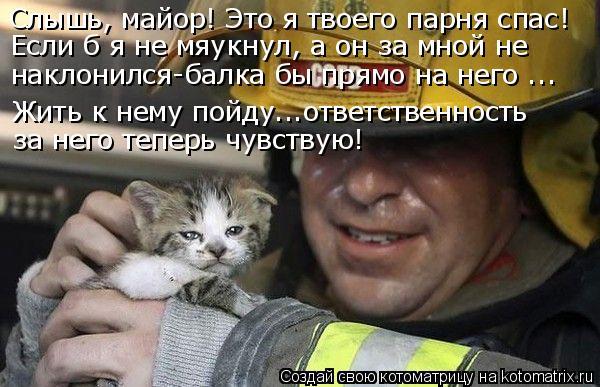 Котоматрица: Слышь, майор! Это я твоего парня спас! Жить к нему пойду...ответственность за него теперь чувствую! Если б я не мяукнул, а он за мной не  наклон