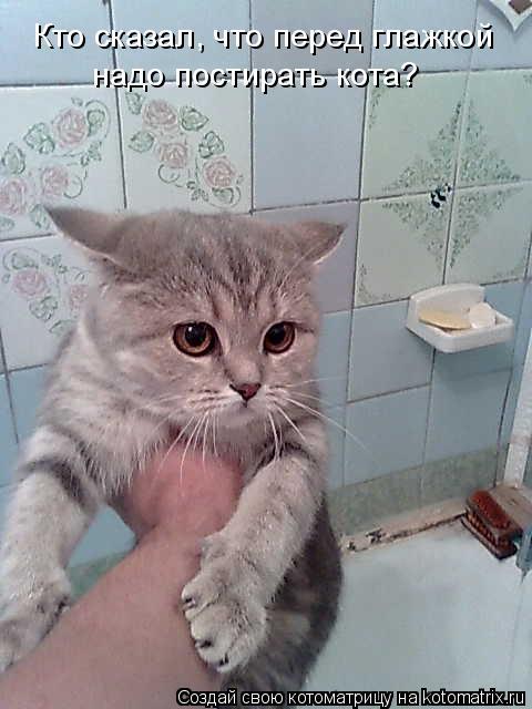 Котоматрица: Кто сказал, что перед глажкой надо постирать кота?