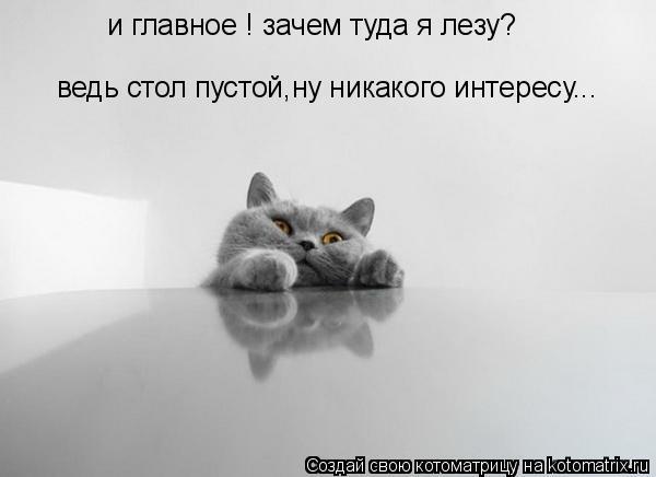 Котоматрица: и главное ! зачем туда я лезу? ведь стол пустой,ну никакого интересу...