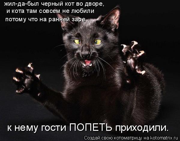 Котоматрица: жил-да-был черный кот во дворе, и кота там совсем не любили потому что на ранней заре к нему гости ПОПЕТЬ приходили.