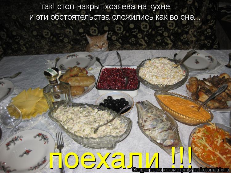 Котоматрица: так! стол-накрыт,хозяева-на кухне... поехали !!! и эти обстоятельства сложились как во сне...