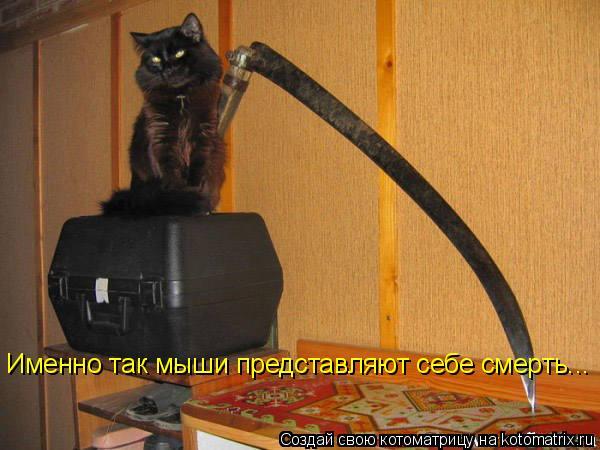 Котоматрица: Именно так мыши представляют себе смерть...