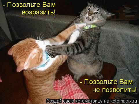 - Позвольте Вам не позволить! - Позвольте Вам возразить!