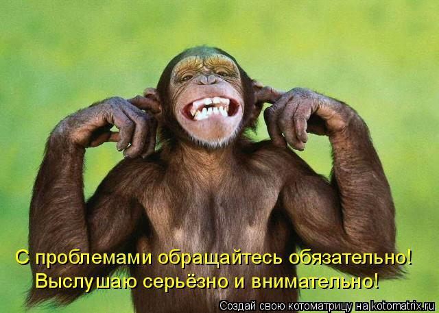 Котоматрица: С проблемами обращайтесь обязательно! Выслушаю серьёзно и внимательно!