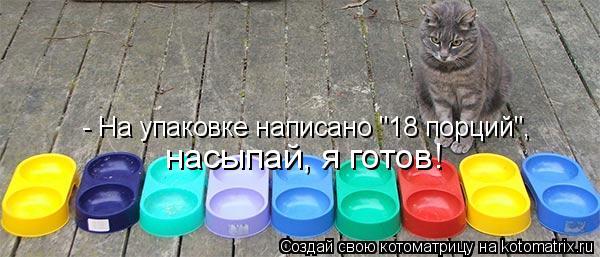 """Котоматрица: - На упаковке написано """"18 порций"""",  насыпай, я готов!"""