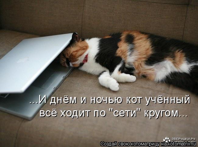 """Котоматрица: ...И днём и ночью кот учённый всё ходит по """"сети"""" кругом..."""
