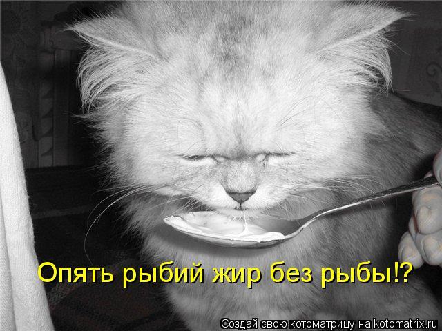 Котоматрица: Опять рыбий жир без рыбы!?