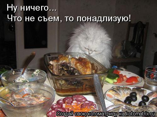 Котоматрица: Ну ничего...  Что не съем, то понадлизую!
