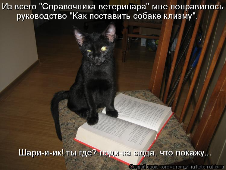 """Из всего """"Справочника ветеринара"""" мне понравилось руководство """"Как пос"""
