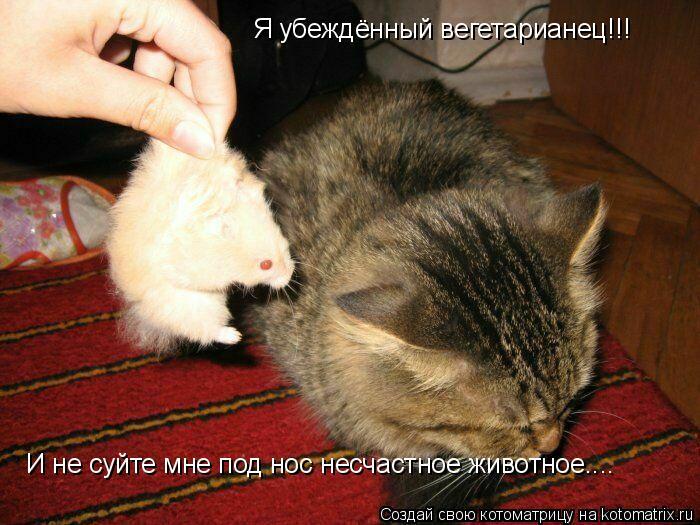 Котоматрица: Я убеждённый вегетарианец!!! И не суйте мне под нос несчастное животное....