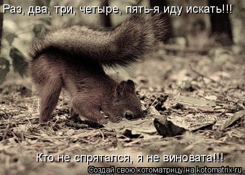 Котоматрица: Раз, два, три, четыре, пять-я иду искать!!! Кто не спрятался, я не виновата!!!