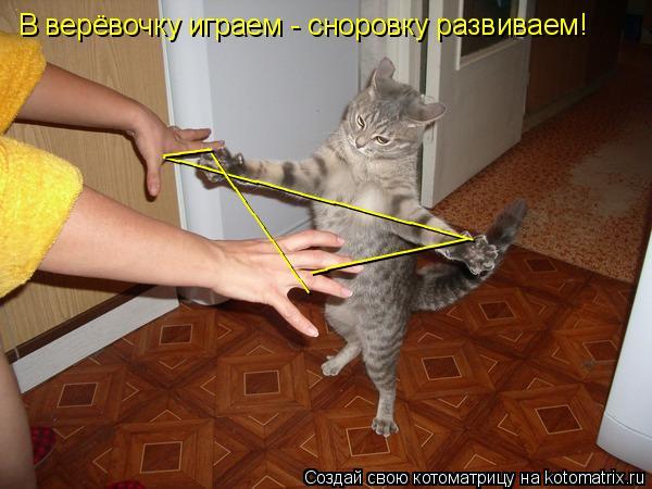Котоматрица: ____________________ ___________ ___ __________ В верёвочку играем - сноровку развиваем!