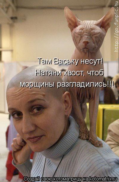 Там Ваську несут! Натяни хвост, чтоб морщины разгладились!!!