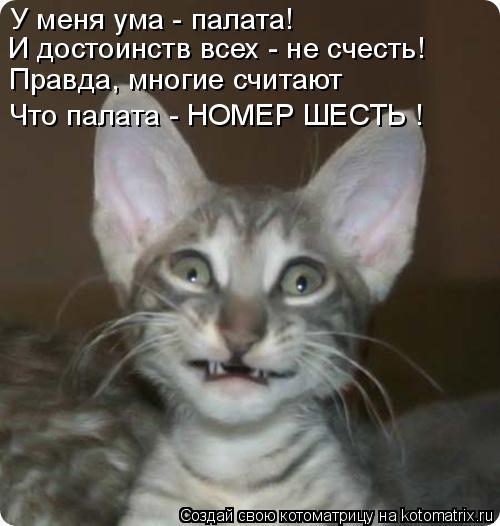 Котоматрица: У меня ума - палата! И достоинств всех - не счесть! Правда, многие считают Что палата - НОМЕР ШЕСТЬ !
