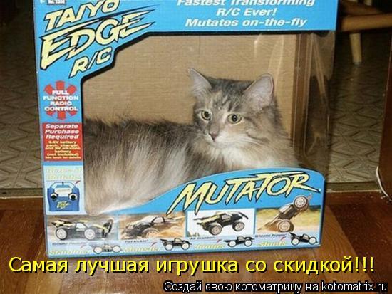 Котоматрица: Самая лучшая игрушка со скидкой!!!