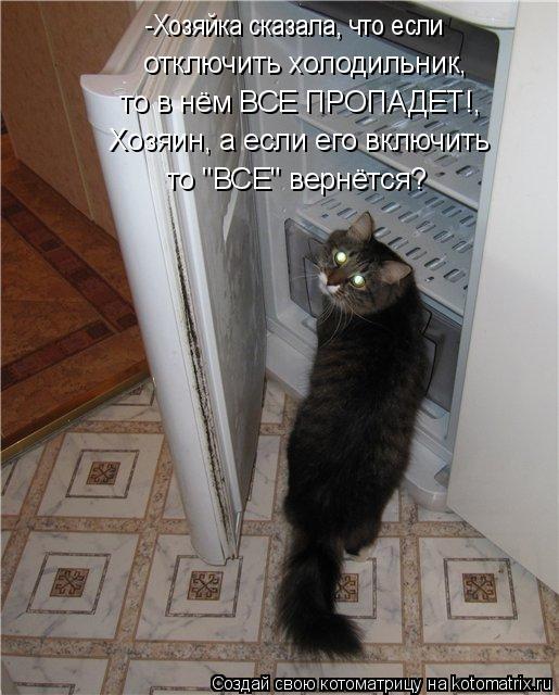 """Котоматрица: -Хозяйка сказала, что если отключить холодильник,  то в нём ВСЕ ПРОПАДЕТ!, Хозяин, а если его включить  то """"ВСЕ"""" вернётся?"""