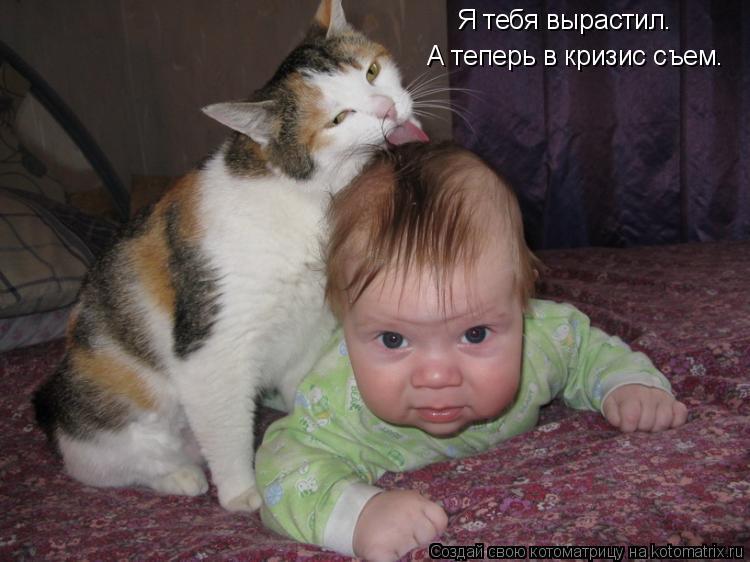 Котоматрица: Я тебя вырастил. А теперь в кризис съем.