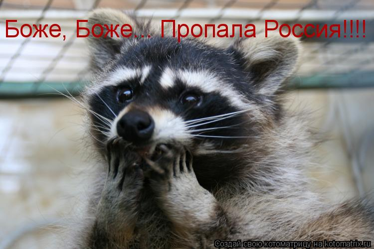 Котоматрица: Боже, Боже... Пропала Россия!!!!