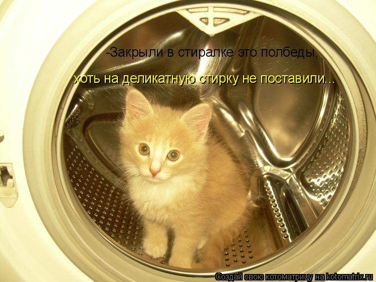 Котоматрица: -Закрыли в стиралке это полбеды, хоть на деликатную стирку не поставили...