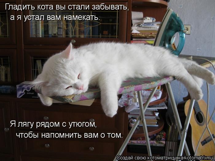 Котоматрица: Гладить кота вы стали забывать,  а я устал вам намекать. Я лягу рядом с утюгом,   чтобы напомнить вам о том.