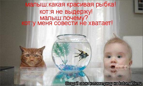 Котоматрица: малыш:какая красивая рыбка! кот:я не выдержу! малыш:почему? кот:у меня совести не хватает!