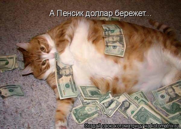 Котоматрица: А Пенсик доллар бережет...