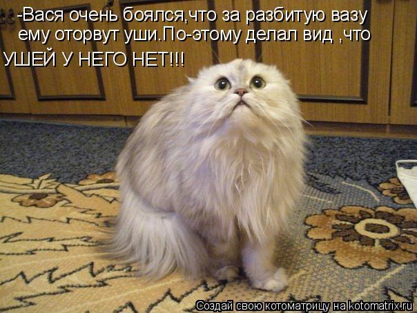 Котоматрица: -Вася очень боялся,что за разбитую вазу ему оторвут уши.По-этому делал вид ,что УШЕЙ У НЕГО НЕТ!!!