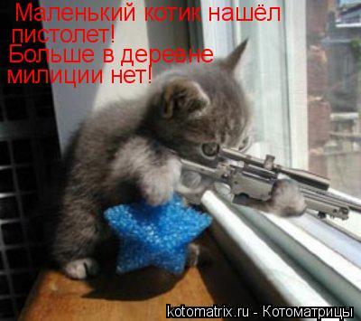 Котоматрица: Маленький котик нашёл пистолет! Больше в деревне  милиции нет!