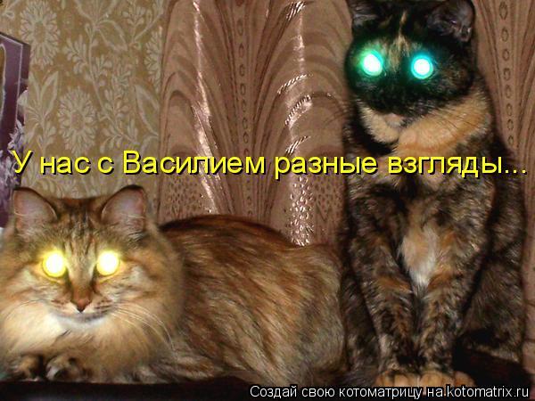 У нас с Василием разные взгляды...