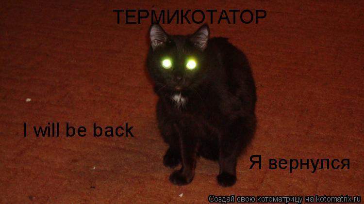 Котоматрица: I will be back ТЕРМИКОТАТОР Я вернулся