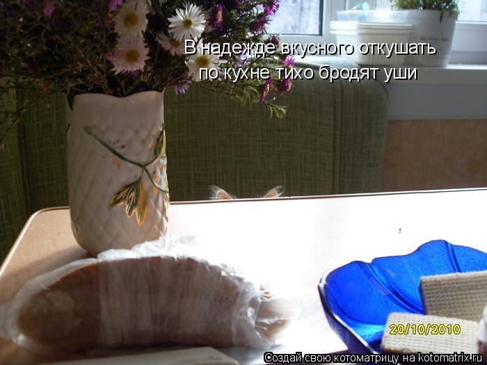 Котоматрица: В надежде вкусного откушать  по кухне тихо бродят уши