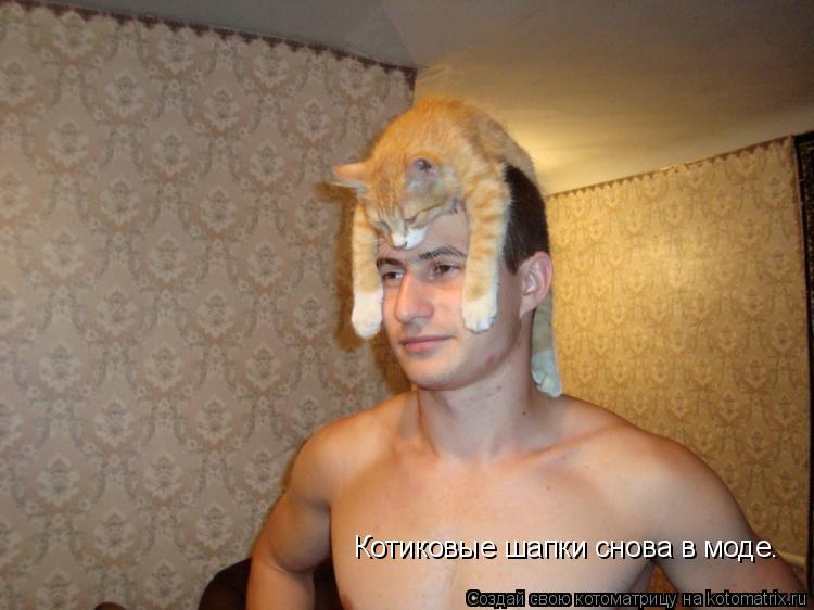 Котоматрица: Котиковые шапки снова в моде.