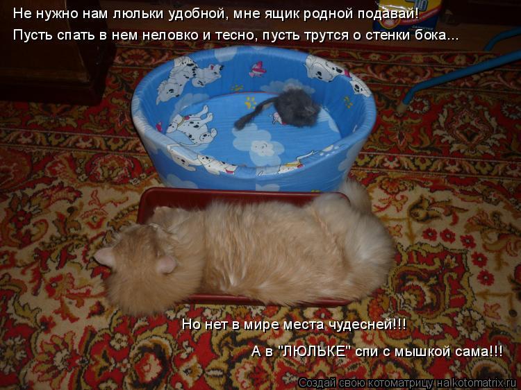 Котоматрица: Не нужно нам люльки удобной, мне ящик родной подавай! Пусть спать в нем неловко и тесно, пусть трутся о стенки бока... Но нет в мире места чуде