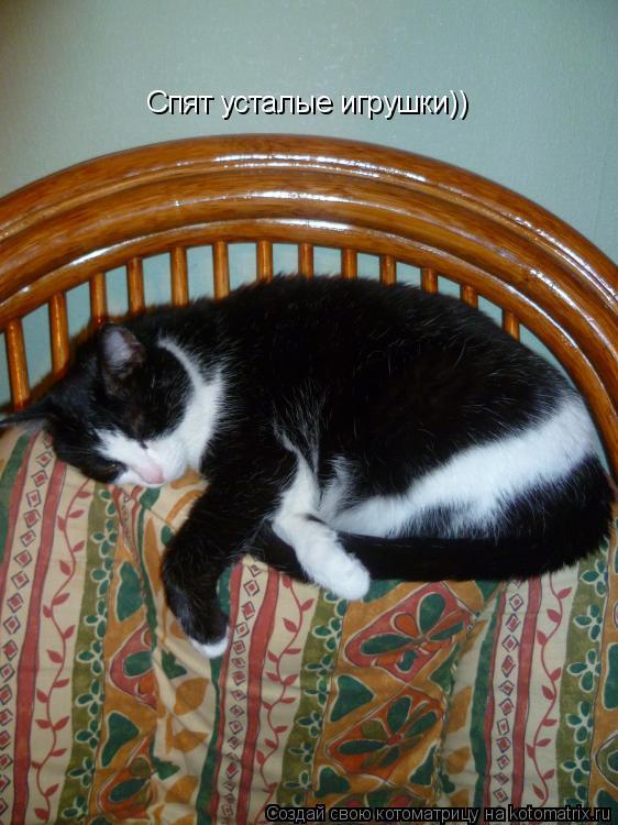 Котоматрица: Спят усталые игрушки))