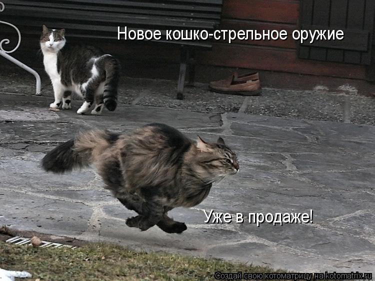 Котоматрица: Уже в продаже! Новое кошко-стрельное оружие