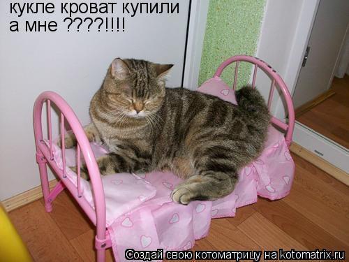 Котоматрица: кукле кроват купили а мне ????!!!!