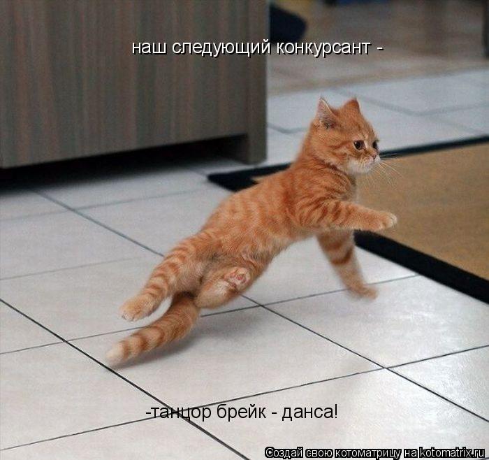 Котоматрица: наш следующий конкурсант - -танцор брейк - данса!