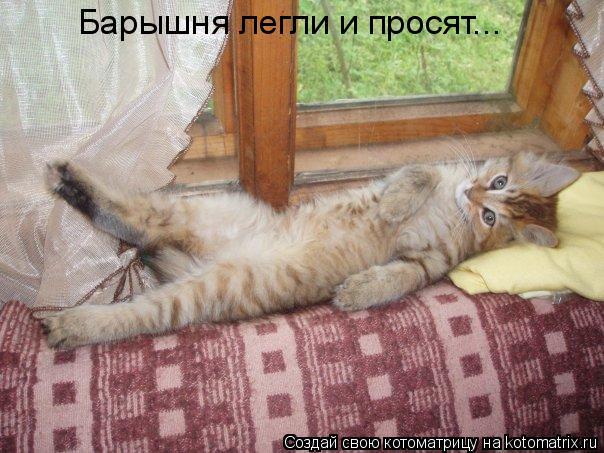 фотография барышня легла и просит