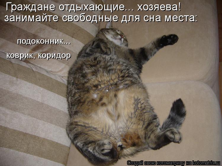 Котоматрица: подоконник... занимайте свободные для сна места: коврик, коридор Граждане отдыхающие... хозяева!