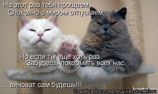 Котоматрица: На этот раз тебя прощаем, Спокойно с миром отпускаем, Но если ты еще хоть раз Забудешь покормить всех нас... ....виноват сам будешь!!!
