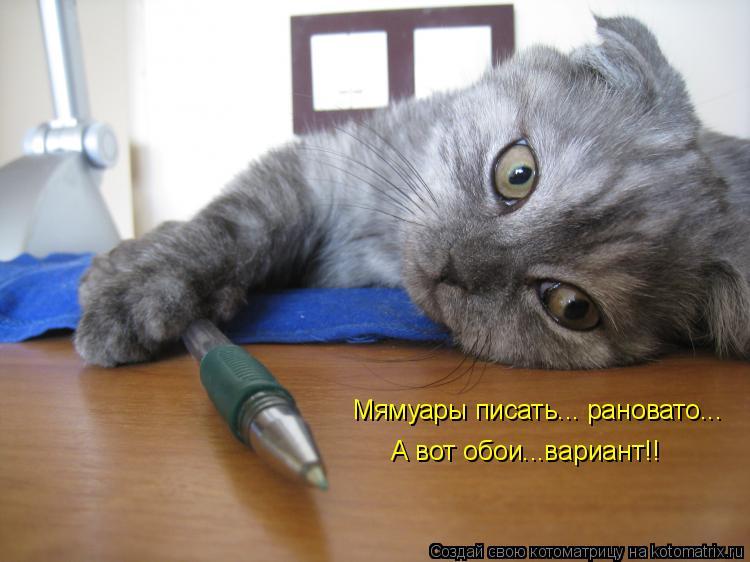 Котоматрица: Мямуары писать... рановато... А вот обои...вариант!!