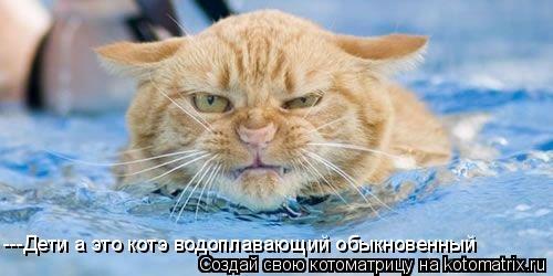 Котоматрица: ---Дети а это котэ водоплавающий обыкновенный
