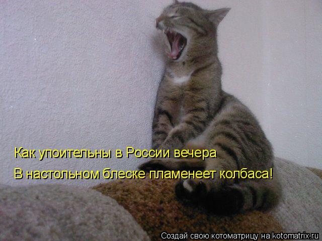 Котоматрица: Как упоительны в России вечера В настольном блеске пламенеет колбаса!