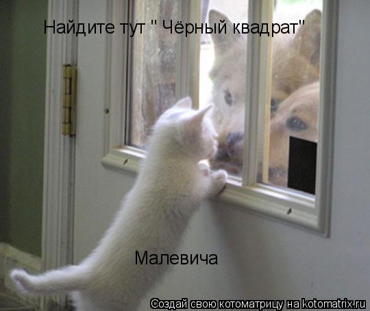 "Котоматрица: Найдите тут "" Чёрный квадрат"" Малевича"