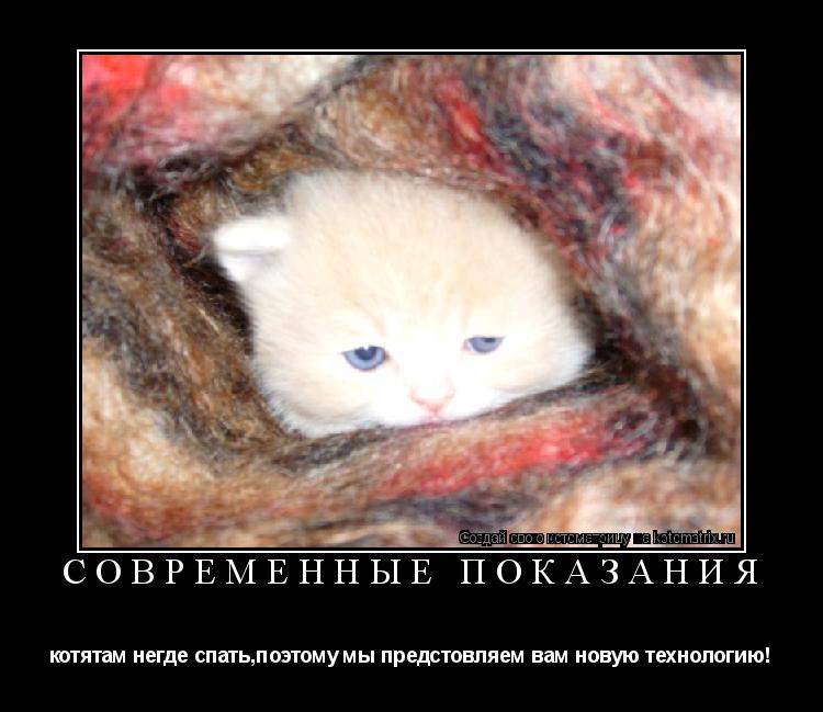 Котоматрица: Современные показания котятам негде спать,поэтому мы предстовляем вам новую технологию!